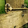 A kulcs - novella