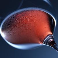 Vörösbor és martini - novella