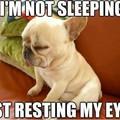 Emberkísérlet 1: nem alszik a gyerek