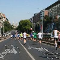 BKV: Buszpótló zebrákat festenek fel a fővárosban