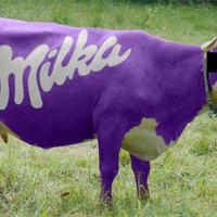 Snickerst szart egy Milka tehén