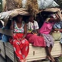 Haiti hómunkások érkeztek