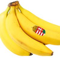 Banánköztársaság nem! Banánország igen!