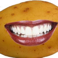 Génmódosított krumpli a hazai élelmiszerpiacon