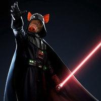 George Lucas-hoz kerültek az Ady-versek jogai