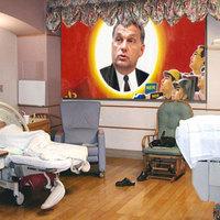 40 anya szül 80 emlékgyermeket Orbán születésnapján