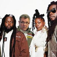 Reggae-zenekart alapít Matolcsy György