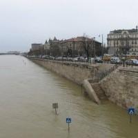 Az Amnesty International tiltakozik a magyarországi kitelepítések ellen
