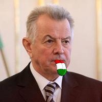 A Magyar Nyelv szerint Schmitt Pál bajban van