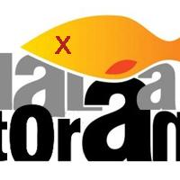Hal a Torán - Új műsor az RTL Klubon