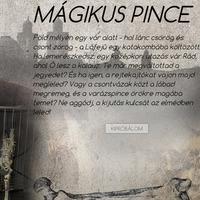 Mágikus Pince - Eger