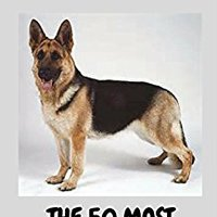>>UPDATED>> DOG BREEDS: Dog Breeds The 50 Most Popular Purebred Dog Breeds With Nice Pictures & Descriptions. Belfast member Dylan Contact Singapur corren traccion freshly
