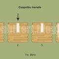 Gomba termesztése: Tuskó, rönk oltása köldökcsappal vagy gombacsírával