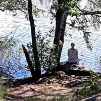 Nyár Stockholmban (3) Árnyékban