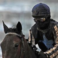 Kíváncsi vagy, mit gondol a zsoké? - Képriport az év első lóversenyéről