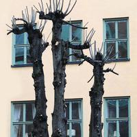 Stockholm +10C (Képriport)