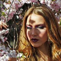 Modell a cseresznyéskertben
