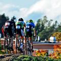 Cyclocross hétvége Stockholmban