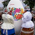 Hímes tojások tavalyról
