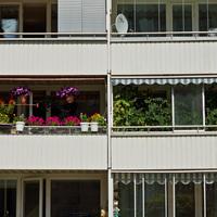 A szomszéd terasza mindig zöldebb