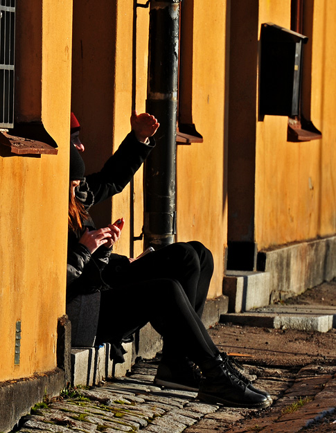 v_rtecken_p_djurg_rden-2b-small.jpg
