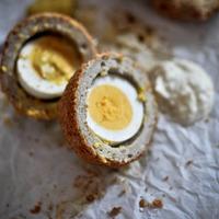 'Scotch Egg'