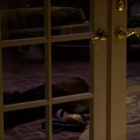 Weeds 3x02 – A Pool and His Money