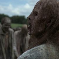 The Walking Dead 9x08 - Evolution