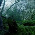 Outlander 2x10 - Prestonpans