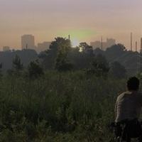 The Walking Dead 1x05 - Wildfire (18+)