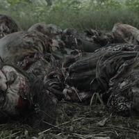 Fear The Walking Dead 5x07 – Still Standing