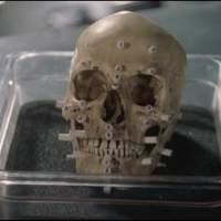 Dr. Csont 1x22 - Családban marad