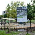 Közösségi programok a parkban