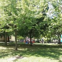 Lezárások a parkban
