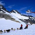 Helikopter és kutyaszán túra Alaszkában