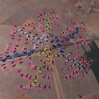 181 nő légi összekapaszkodása