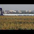 Madárütközés, Ural Airbus A321 a kukoricásban, mindenki túlélte