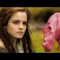 Noé és a Rózsaszín Rinocérosz kalandjai