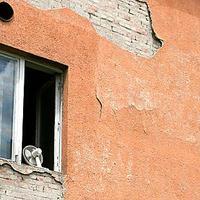 Tényleg nem lélegzik a passzívházak fala?