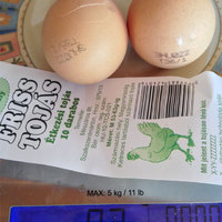 Már a tyúkokból is kispórolják a tojást
