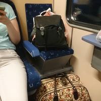 Ha elég pechesek vagyunk, Mini-me ülőhelyét is oszthatja nekünk az Elvira