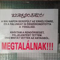 Az év front/backdoor-üzenete feat. Szardobáló