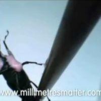 A Homár pillanatnyilag kedvenc reklámja - A Samsung és az igen kis méretek