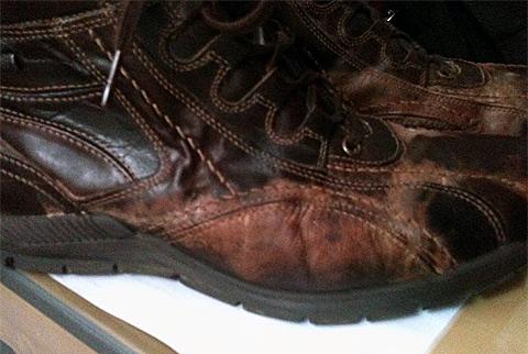 8699150f4b63 Nem bírta a Deichmann-cipő a havat - Tékozló Homár
