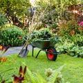 A gyönyörű kert titka - A komposztálás fontossága