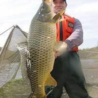 Horgászat a Dunán