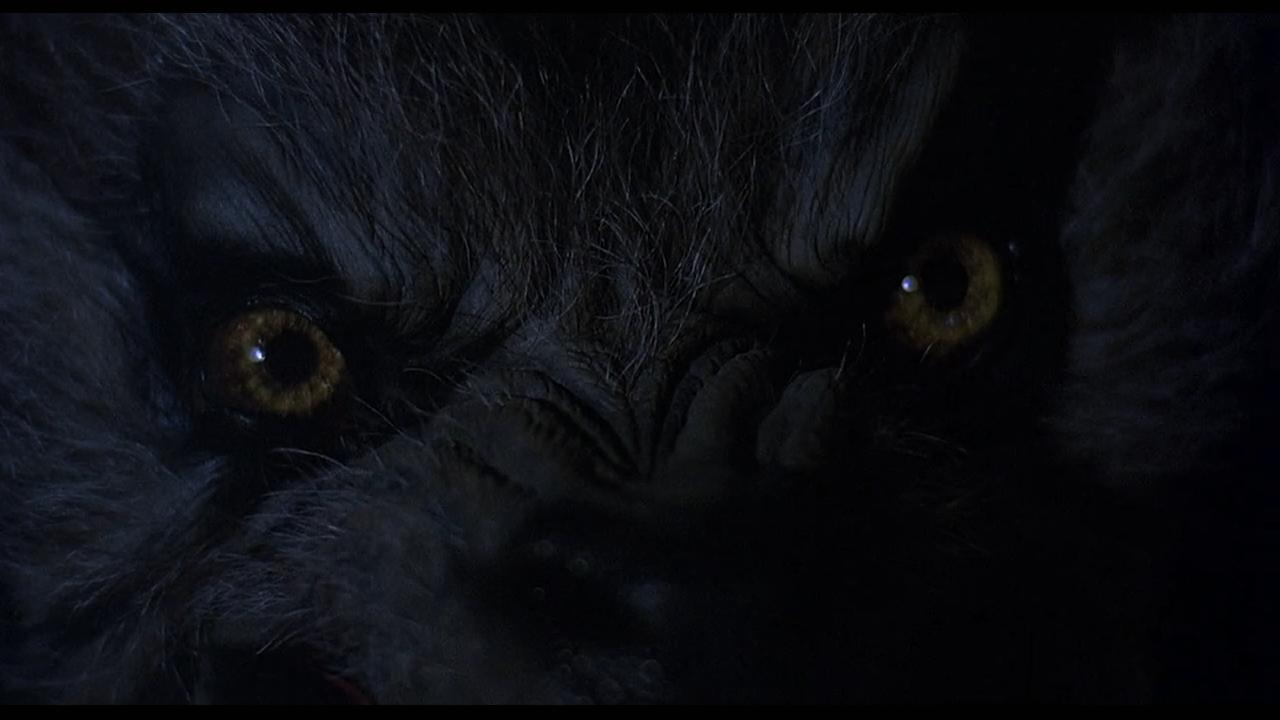 american_werewolf_london-closeup.png