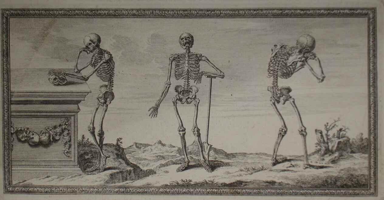 sad-skeletons.jpg