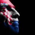 A horvát nyelvről