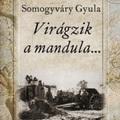 Dr. Fazekas Sándor előadása